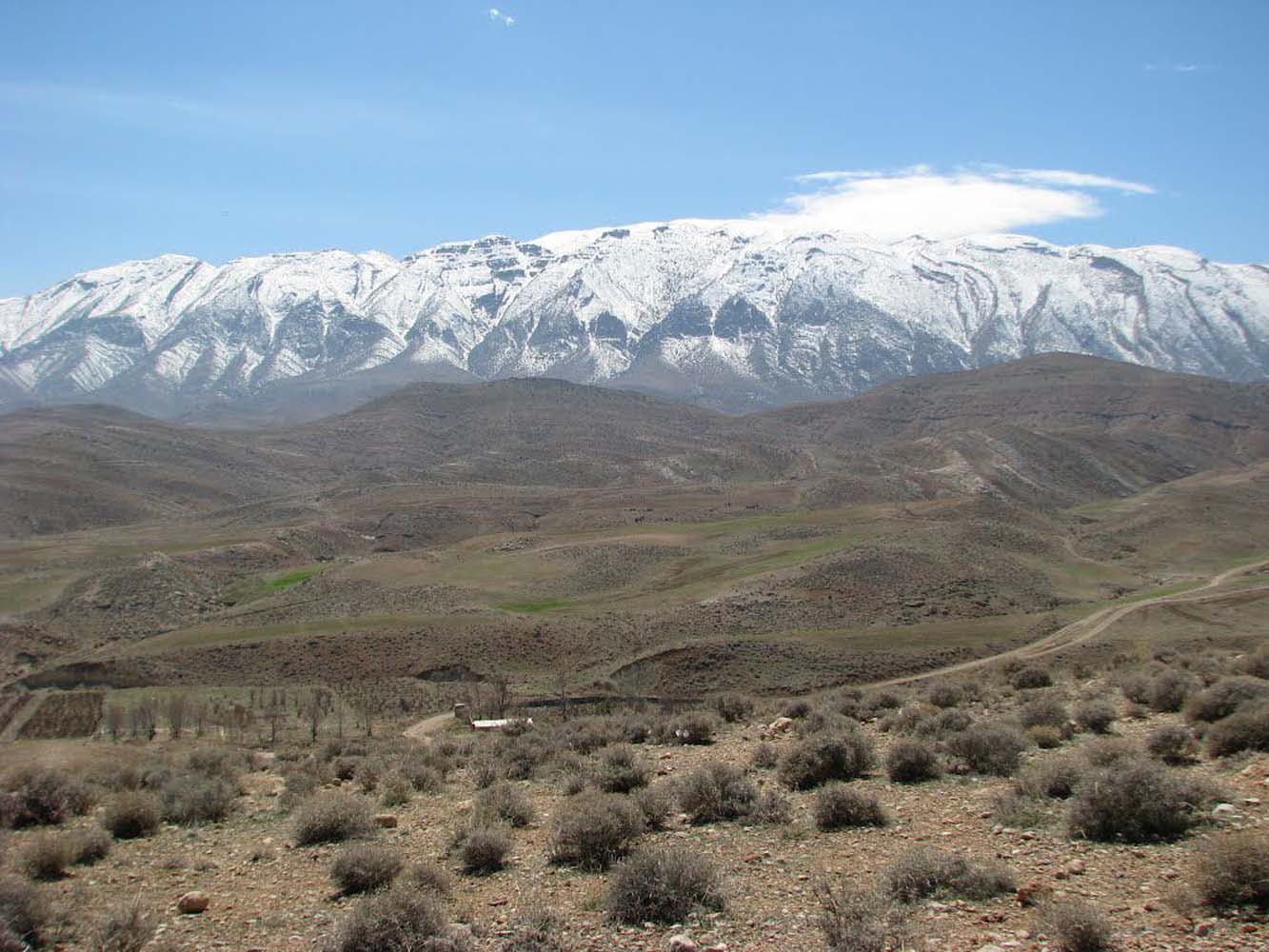 Image result for کوه دراک